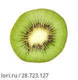 Купить «Slice of kiwi fruit isolated», фото № 28723127, снято 20 июня 2018 г. (c) Александр Лычагин / Фотобанк Лори