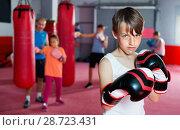 Купить «Portrait of boy boxer wearing gloves at boxing hall», фото № 28723431, снято 12 апреля 2017 г. (c) Яков Филимонов / Фотобанк Лори