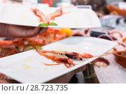Купить «Cooked tiger shrimp oт plate in male hands», фото № 28723735, снято 26 января 2018 г. (c) Яков Филимонов / Фотобанк Лори