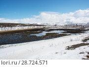 Купить «Thawing lake and emerging marsh habitat from the frozen tundra landscape. Whooper Swan (Cygnus cygnus) breeding habitat. Borselvfjellet, Finnmark, Norway, June.», фото № 28724571, снято 20 сентября 2018 г. (c) Nature Picture Library / Фотобанк Лори
