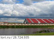 Купить «Сельский пейзаж, сельское хозяйство - ферма с красной крышей и белым забором у пруда летом на фоне голубого облачного неба», фото № 28724935, снято 25 июня 2018 г. (c) Илья Илмарин / Фотобанк Лори