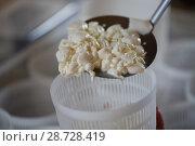 Купить «Сырное тесто в формах», фото № 28728419, снято 9 июля 2018 г. (c) Марина Володько / Фотобанк Лори