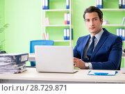 Купить «Businessman working in the office», фото № 28729871, снято 31 мая 2018 г. (c) Elnur / Фотобанк Лори