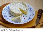 Купить «Мягкий сыр с плесенью», фото № 28730319, снято 9 июля 2018 г. (c) Natalya Sidorova / Фотобанк Лори