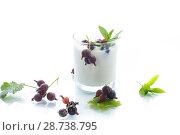 Купить «sweet homemade yogurt with black currant», фото № 28738795, снято 11 июля 2018 г. (c) Peredniankina / Фотобанк Лори