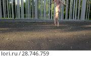 Купить «Pretty ballerina dancing outdoors», видеоролик № 28746759, снято 10 июля 2018 г. (c) Andriy Bezuglov / Фотобанк Лори