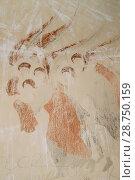 Купить «Sagarejo Municipality, Kakheti region, Georgia - October 23, 2016: Ancient Frescoes In Walls Of Caves Of David Gareja Monastery Complex. Monastery Is Located Is Southeast Of Tbilisi. 6th Century.», фото № 28750159, снято 23 октября 2016 г. (c) easy Fotostock / Фотобанк Лори