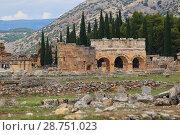 Купить «Руины античного города Иераполис. Памуккале. Турция», фото № 28751023, снято 20 июня 2018 г. (c) Роман Рожков / Фотобанк Лори