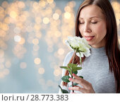 Купить «woman smelling white rose over festive lights», фото № 28773383, снято 27 июля 2015 г. (c) Syda Productions / Фотобанк Лори