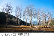 Купить «Landscape at Catalan Pyrenees in winter», фото № 28780743, снято 19 января 2019 г. (c) Яков Филимонов / Фотобанк Лори