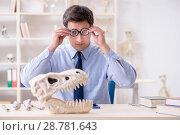Купить «Funny crazy professor studying dinosaur skeleton», фото № 28781643, снято 7 марта 2018 г. (c) Elnur / Фотобанк Лори