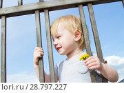 Купить «Маленькая девочка с цветком одуванчика смотрит сквозь решетку забора», фото № 28797227, снято 6 июня 2018 г. (c) Момотюк Сергей / Фотобанк Лори