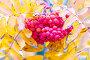 Купить «Bunches of ripe rowan.», фото № 28803751, снято 13 октября 2017 г. (c) Акиньшин Владимир / Фотобанк Лори