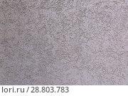 Купить «The texture of the plastered wall, gray.», фото № 28803783, снято 13 октября 2017 г. (c) Акиньшин Владимир / Фотобанк Лори
