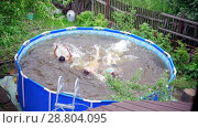 Купить «Three teenagers dive in swimming pool outdoors at summer day», видеоролик № 28804095, снято 22 июля 2019 г. (c) Константин Шишкин / Фотобанк Лори