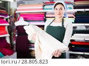 Купить «Seller showing white fabric», фото № 28805823, снято 4 января 2017 г. (c) Яков Филимонов / Фотобанк Лори