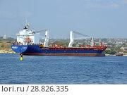 Купить «Сухогруз Souria (порт приписки Латакия, IMO 9274331) в акватории Севастопольской бухты», фото № 28826335, снято 13 июля 2018 г. (c) Александр Замараев / Фотобанк Лори