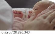 Купить «Mum stroking gently sleepy newborn baby», видеоролик № 28826343, снято 21 ноября 2019 г. (c) Данил Руденко / Фотобанк Лори