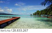 Купить «wooden pier on tropical beach in french polynesia», видеоролик № 28833267, снято 1 июля 2018 г. (c) Syda Productions / Фотобанк Лори