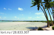 Купить «tropical beach with palm trees in french polynesia», видеоролик № 28833307, снято 1 июля 2018 г. (c) Syda Productions / Фотобанк Лори