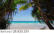 Купить «tropical beach with cocopalms in french polynesia», видеоролик № 28833331, снято 1 июля 2018 г. (c) Syda Productions / Фотобанк Лори