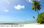 Купить «tropical beach with palm tree in french polynesia», видеоролик № 28833351, снято 1 июля 2018 г. (c) Syda Productions / Фотобанк Лори