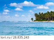 Купить «Palms trees on sandy beach. Caribbean Sea», фото № 28835243, снято 7 января 2017 г. (c) EugeneSergeev / Фотобанк Лори
