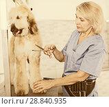Купить «woman hairdresser cuts Afghan puppy Shepherd in beauty salon for animals», фото № 28840935, снято 17 октября 2017 г. (c) Татьяна Яцевич / Фотобанк Лори