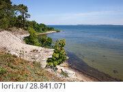 Побережье Балтийского моря в Эстонии в солнечный день. Стоковое фото, фотограф Victoria Demidova / Фотобанк Лори