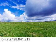 Купить «Summer arctic landscape - grassy rocky tundra under a blue sky with clouds», фото № 28841219, снято 20 июля 2018 г. (c) Евгений Харитонов / Фотобанк Лори