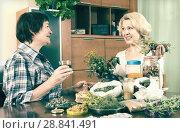 Купить «Two neighbors drinking herbal tea», фото № 28841491, снято 20 мая 2014 г. (c) Яков Филимонов / Фотобанк Лори