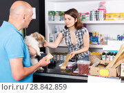 Купить «Young woman seller offering goods to man customer in pet store», фото № 28842859, снято 7 мая 2018 г. (c) Яков Филимонов / Фотобанк Лори