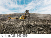 Купить «Large quarry dump truck. Loading the rock in dumper. Loading coal into body truck. Production useful minerals. Mining truck mining machinery, to transport coal from open-pit as the coal production.», фото № 28843659, снято 22 июня 2018 г. (c) Сергей Тимофеев / Фотобанк Лори