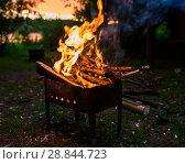 Купить «Дрова горящие в мангале при ночном свете», эксклюзивное фото № 28844723, снято 24 июня 2018 г. (c) Игорь Низов / Фотобанк Лори