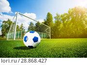 Footfall soccer ball and gates on playing field. Стоковое фото, фотограф Сергей Новиков / Фотобанк Лори