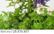 Купить «green herbs or spices in wooden box on table», видеоролик № 28876807, снято 17 июля 2018 г. (c) Syda Productions / Фотобанк Лори