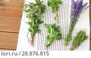Купить «greens, spices or medicinal herbs on table», видеоролик № 28876815, снято 17 июля 2018 г. (c) Syda Productions / Фотобанк Лори