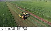 Купить «Уборка урожая на поле. Загрузка в грузовик.», видеоролик № 28881723, снято 21 июня 2018 г. (c) Кекяляйнен Андрей / Фотобанк Лори