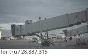 Купить «Luggage loading track at the Pulkovo airport in Saint-Petersburg», видеоролик № 28887315, снято 6 июня 2018 г. (c) Ирина Мойсеева / Фотобанк Лори