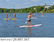 Купить «Stand up paddle surfing and stand up paddle boarding (SUP), offshoot of surfing, in Toolonlahti bay. Great day for sports.Хельсинки, Финляндия», фото № 28887367, снято 19 июля 2018 г. (c) Валерия Попова / Фотобанк Лори