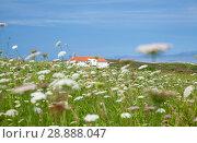 Пейзажи Кантабрии, Северная Испания. Стоковое фото, фотограф Tamara Kulikova / Фотобанк Лори