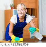blonde girl in uniform dusting in room and smiling. Стоковое фото, фотограф Яков Филимонов / Фотобанк Лори