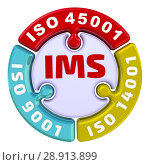 Купить «IMS. ISO integrated Management System. The check mark in the form of a puzzle», иллюстрация № 28913899 (c) WalDeMarus / Фотобанк Лори