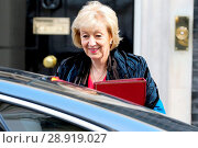 Купить «Andrea Leadsom, Secretary of State for Environment Food and Rural Affairs, arriving for the weekly cabinet meeting at 10 Downing Street in Whitehall, London...», фото № 28919027, снято 21 марта 2017 г. (c) age Fotostock / Фотобанк Лори