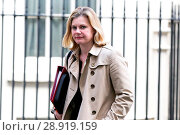Купить «Justine Greening, Secretary of State for Education, Minister for Women and Equalities, leaving the weekly cabinet meeting at 10 Downing Street in Whitehall...», фото № 28919159, снято 21 марта 2017 г. (c) age Fotostock / Фотобанк Лори