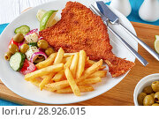 Купить «crispy fried flounder in a breadcrumbs», фото № 28926015, снято 30 июля 2018 г. (c) Oksana Zh / Фотобанк Лори