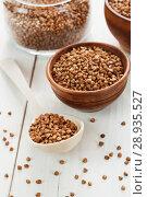 Купить «Whole buckwheat grain», фото № 28935527, снято 16 апреля 2018 г. (c) Надежда Мишкова / Фотобанк Лори