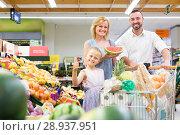 Купить «Happy female and woman with girl picking fruits», фото № 28937951, снято 14 августа 2018 г. (c) Яков Филимонов / Фотобанк Лори