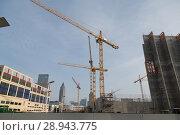 Купить «Construction site at the Frankfurt Exhibition Center», фото № 28943775, снято 11 февраля 2017 г. (c) Caro Photoagency / Фотобанк Лори
