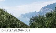 Купить «Torbole, Italy, view of Lake Garda», фото № 28944007, снято 9 августа 2016 г. (c) Caro Photoagency / Фотобанк Лори